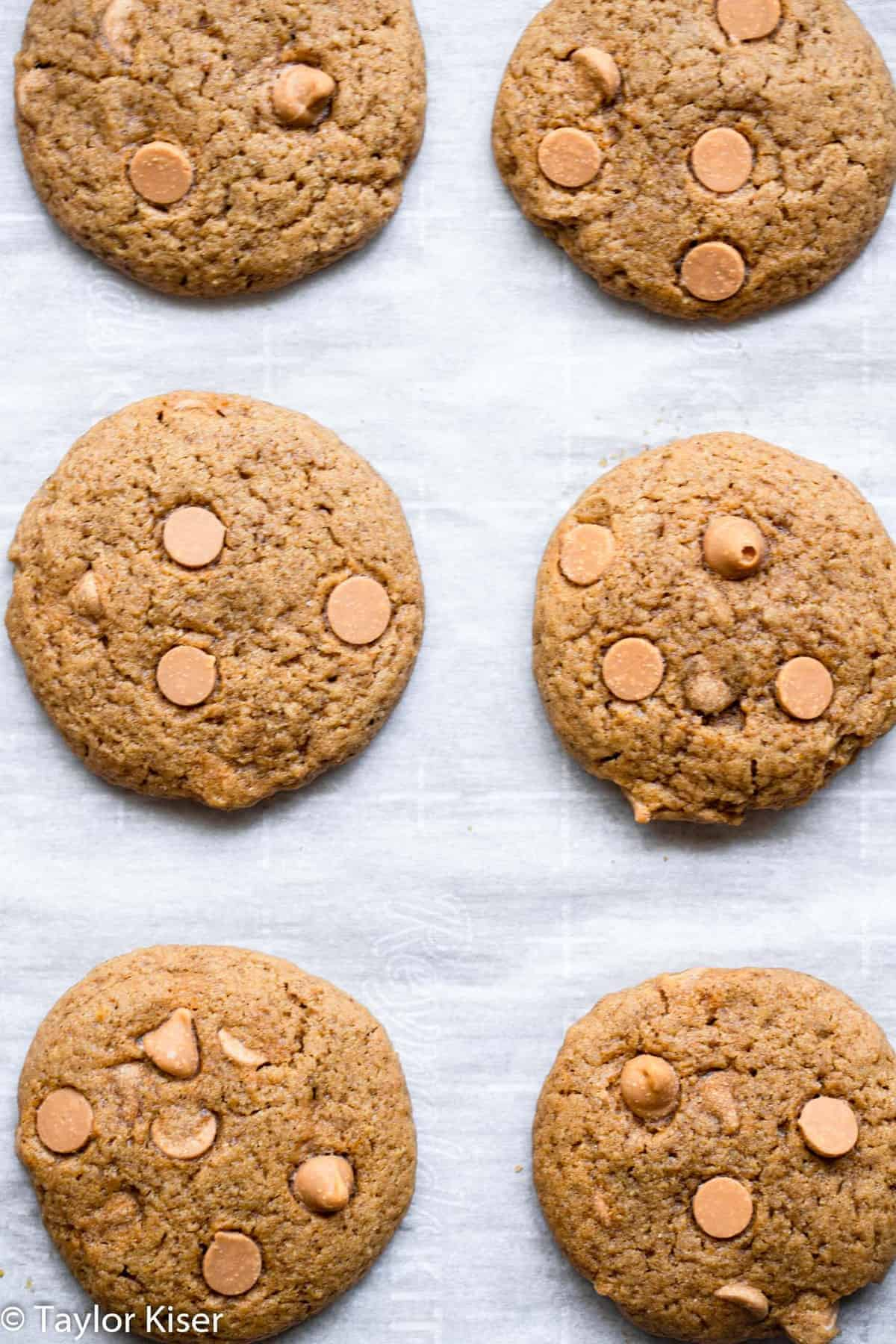 healthy pumpkin cookies lined up on a baking sheet