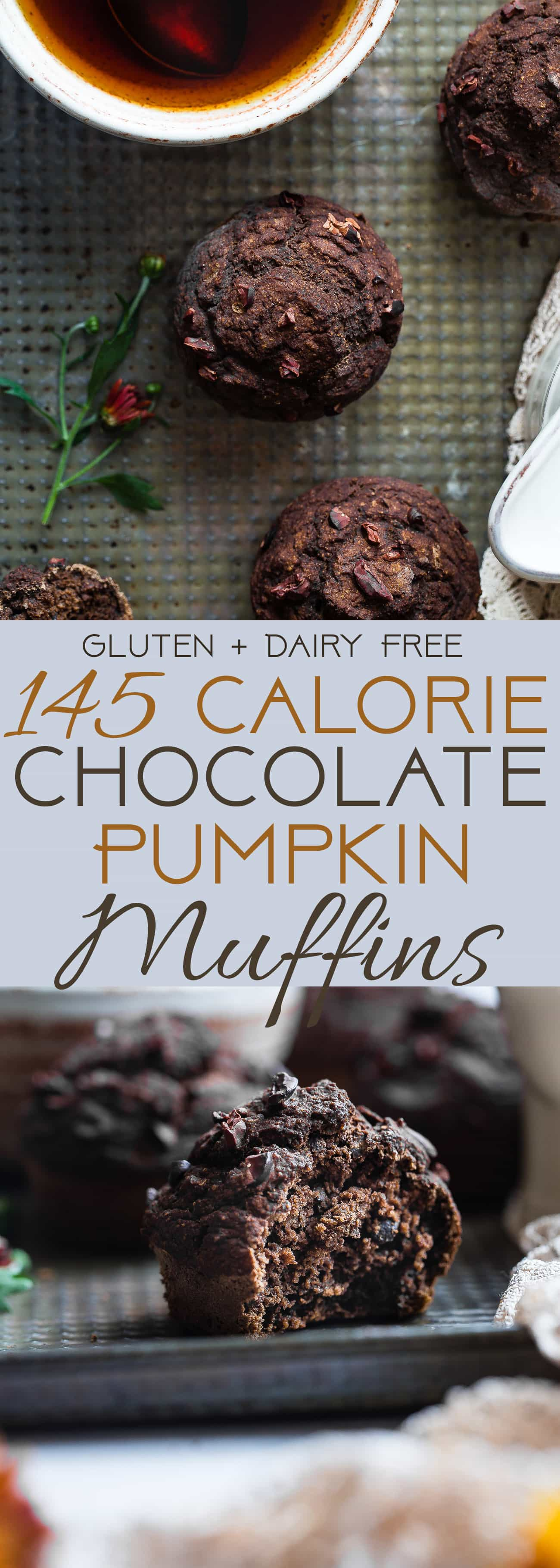 Healthy Gluten Free Chocolate Pumpkin Muffins - SO moist and chewy! Made with whole grains, dairy free, low fat, only 145 calories!  Perfect for breakfast or snack and kid friendly too! | Foodfaithfitness.com | @FoodFaitFit | healthy chocolate muffins. healthy pumpkin muffins. easy pumpkin muffins. sugar free muffins. gluten free pumpkin muffins. gluten free chocolate muffins. low fat muffins.