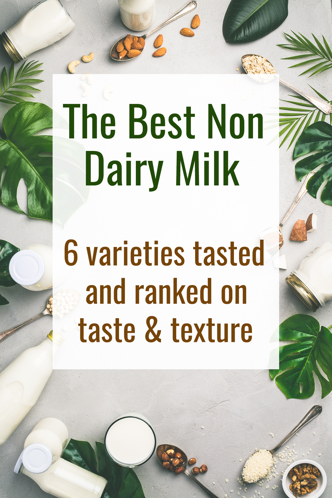 Non Dairy Milk Taste Test - Ever wondered what the Best Non Dairy Milk is? We taste tested 6 differnent brands and kinds so that you can figure out what is the best option for you! | #Foodfaithfitness | #Dairyfree #glutenfree #healthy #cleaneating