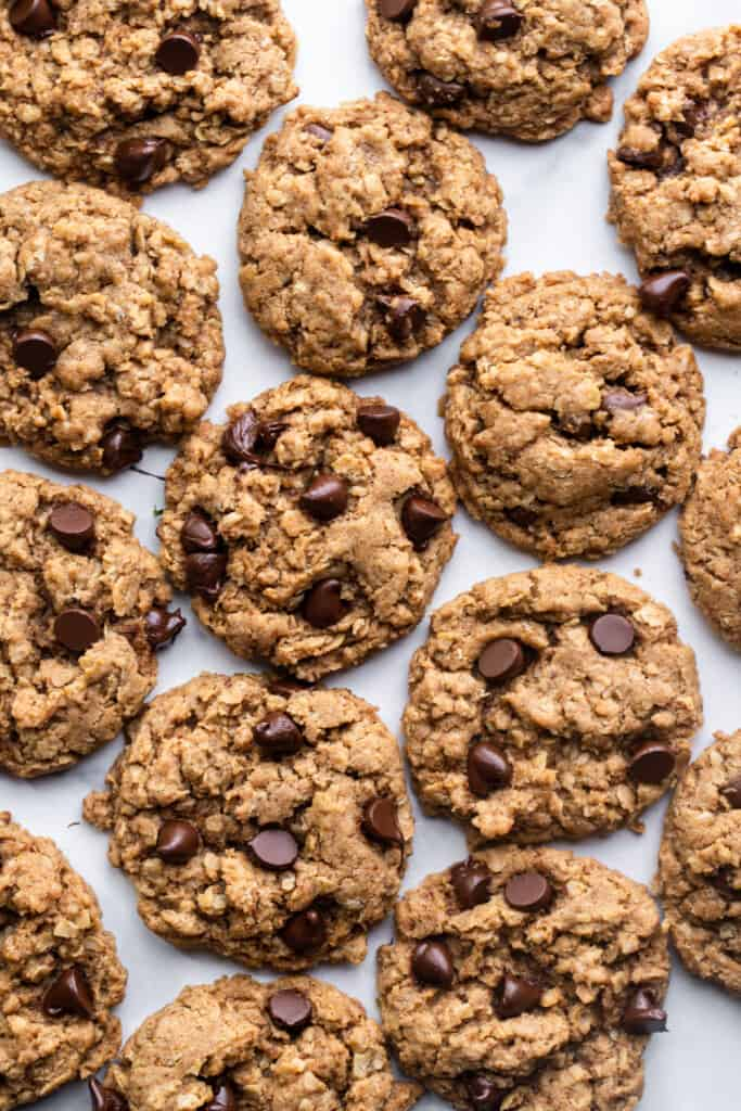 Vegan Oatmeal Chocolate Chip Cookies arranged on a flat surface