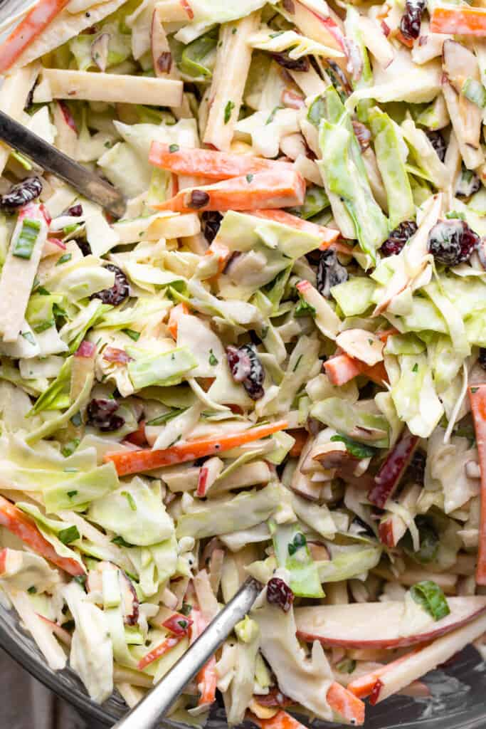 close up view of Apple Coleslaw