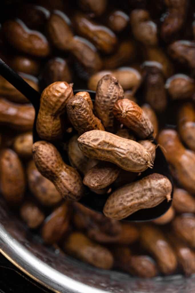 instant pot full of Instant Pot Boiled Peanuts